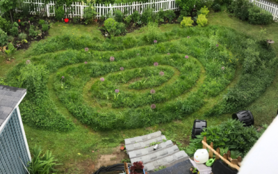 5 Benefits of a Lawn Spiral
