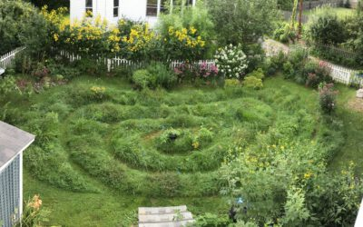 Six Surprises in the Lawn Spiral Adventure